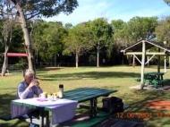 grassy-picnic